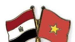 越南强化与埃及的投资合作关系