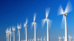 中国香港企业欲在清化省投资8000万美元建设风电厂