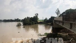 越南是20年来受灾最严重的6个国家之一