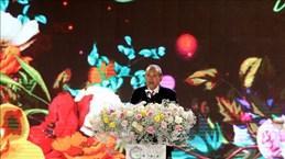 2019年第八次大叻花卉节正式拉开序幕