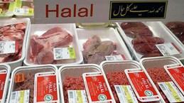 自5月30日起出口巴基斯坦的商品须持有清真认证书