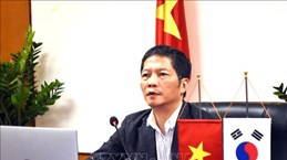 促进越南与罗马尼亚贸易合作