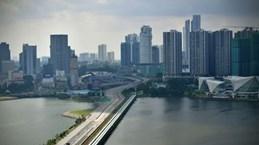 新加坡和马来西亚重新开放边境