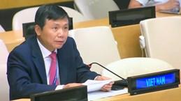越南重申支持核查哥伦比亚和平协议执行情况