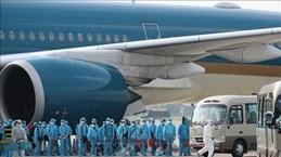 """越南航空的""""特殊""""航班"""