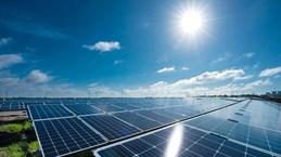 茶荣省加快可再生能源项目建设进度