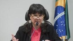 阿根廷议员:越南与阿根廷全面伙伴关系继续得到巩固