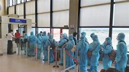 越南将在中国台湾的230名公民接回国