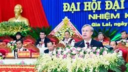 越共中央书记处常务书记陈国旺出席越共嘉莱省第十六次代表大会