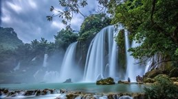 尽早试点组织越中两国游客参观板约(越南)——德天(中国)瀑布景区