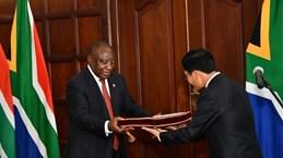 """努力促进越南与南非""""致力于合作与发展伙伴""""关系"""