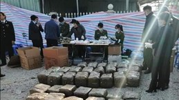 海防市发现装有超过570公斤重的疑似罂粟树脂的集装箱