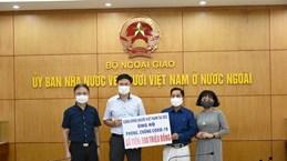 旅居捷克和英国越南人助力国内同胞抗击疫情