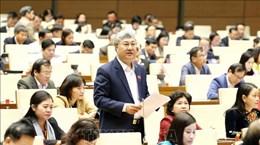 越通社简讯2019.11.19
