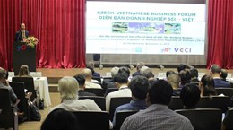 越南与捷克推动各领域的合作