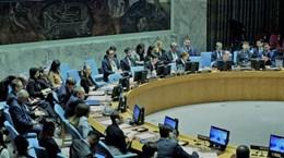 越南主持联合国安理会关于马里局势的会议