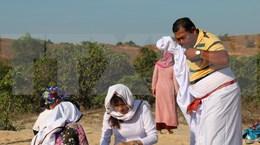 平顺省占族人踊跃前往红洞陵园  打扫坟墓开启斋月节