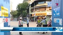 在越南工作的外籍劳动者超过93000人