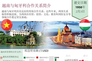 图表新闻:越南与匈牙利合作关系简介