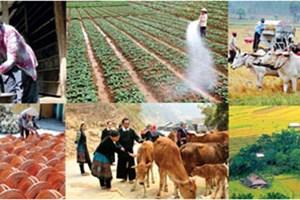 越南多维贫困指数呈现突出进展