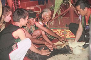 莫侬族的健康祭拜习俗