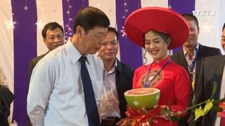 北江省陆岸县着力打造柑桔类水果品牌