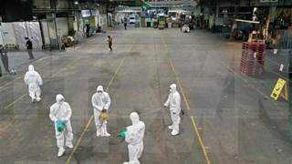 越南外交部:在韩公民需注意韩国新冠肺炎疫情