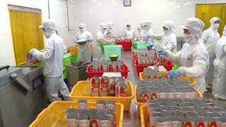 胡志明市发挥国家大货物生产中心的作用