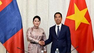 第八次越南-蒙古外交部副部长级政治磋商会议在河内召开