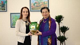 越南国会副主席丛氏放与IPU主席和古巴国会副主席举行双边会晤