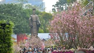 第五届河内日本樱花节将于2020年3月举行