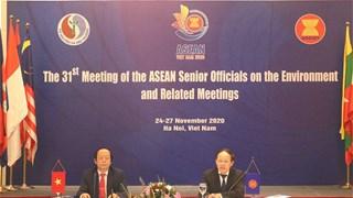 第31届东盟环境高级官员会议面向可持续生态系统