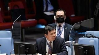 越南与联合国安理会:越南将与东盟一道为缅甸渡过难关提供支持