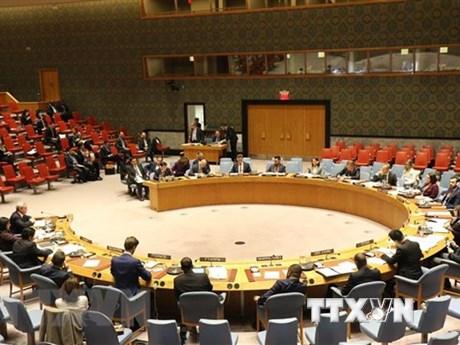 越南对加沙地带持续冲突深表关切
