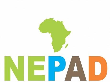东盟进一步加强与非洲的伙伴关系