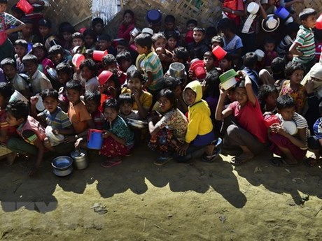 联合国帮助缅甸加强粮食安全和自然资源管理