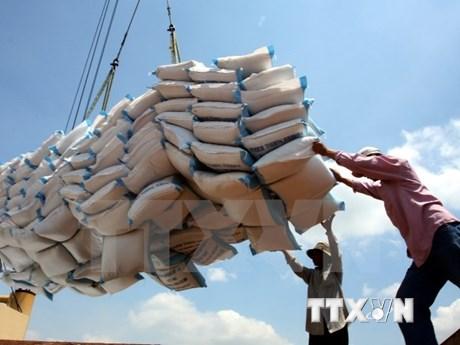 越南向埃及出口2万吨大米的大好机会