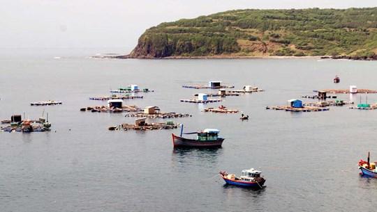 越南海洋环境:现状与对策