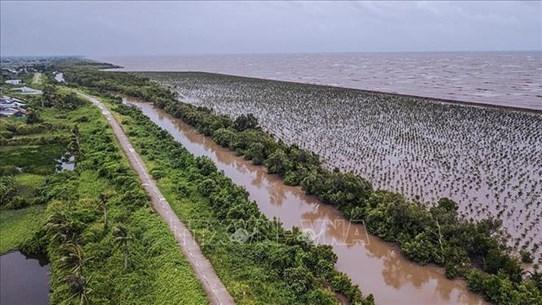 九龙江三角洲适应气候变化企业网络正式成立