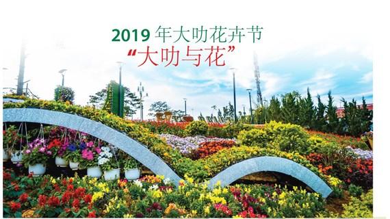 图表新闻:大叻市为花卉节缤纷多彩