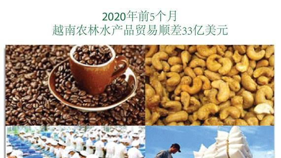 图表新闻:2020年前5个月 越南农林水产品贸易顺差33亿美元