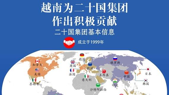 图表新闻: 越南为二十国集团作出积极贡献
