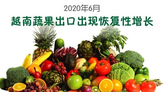 图表新闻:2020年6月越南蔬果出口出现恢复性增长