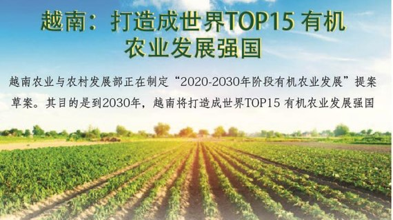图表新闻:越南打造成世界TOP15 有机农业发展强国