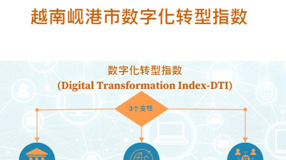 互动图表:岘港市数字化转型指数