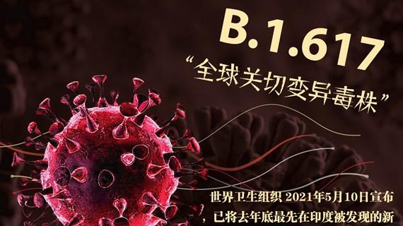 """图表新闻:B.1.617——""""全球关切变异毒株"""""""