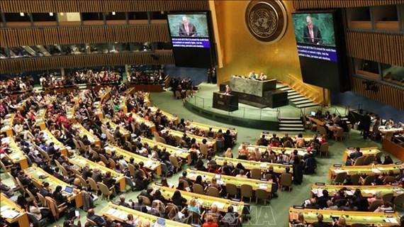 塞内加尔大使强调越南一直是国际社会负责任的一员并坚持走和平发展道路
