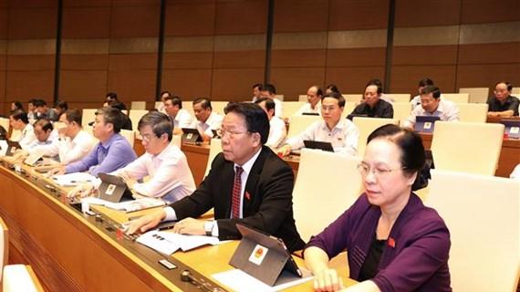越南第十四届国会第八次会议:表决通过一项决议  讨论两部法案
