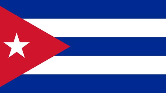 古巴武装力量成立63周年招待会在河内举行