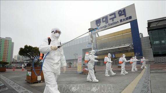 新冠肺炎疫情: 越南驻韩国大使馆建议所在国为越南公民展开积极的治疗创造便利条件